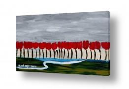 פרחים טוליפ | שדה טוליפים