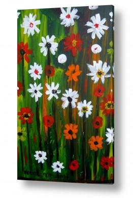 ציורים ורד אופיר | פרחי אביב
