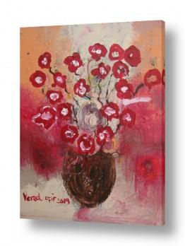 ציורים ורד אופיר | כלניות