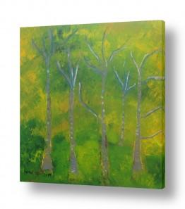 ציורים ורד אופיר | יער בחדרה