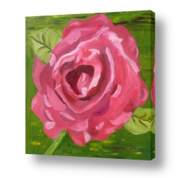 ציורים ורד אופיר | ציפור גן עדן