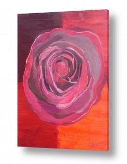 ציורים ורד אופיר | שושנה