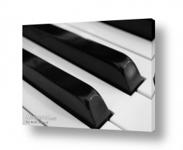 צילומים מוסיקה | שחור לבן