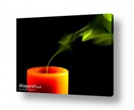 צילומים אמיר אלון   עשן ירוק