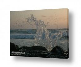תמונות לפי נושאים שובר גלים | שובר גלים