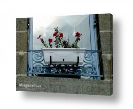 אירופה צרפת   אדנית פרחים