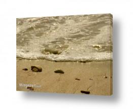 נוף חופים | אדווה