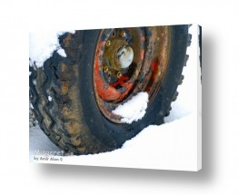 צילומים תחבורה   גלגל בשלג