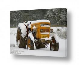 צילומים תחבורה   טקטור מכוסה שלג