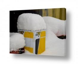 תמונות לפי נושאים שמן | פח שמן