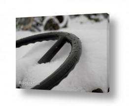 תמונות לפי נושאים רטוב | הגה קפוא