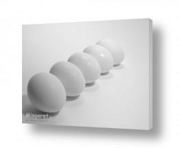 צילומים אוכל | ביצים בשורה