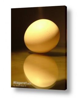 צילומים אוכל | השתקפות ביצה