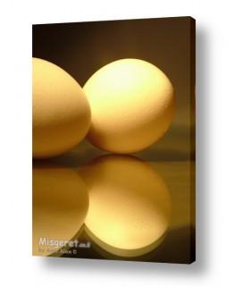צילומים סטודיו | ביצים