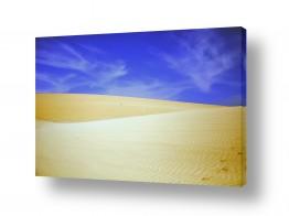 נוף מדבר | עקבות בחול