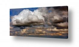 יונקים כבשה | עננים