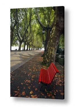 טבע דומם ספסלים | איזו מן שלווה