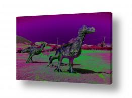 תמונות לפי נושאים דינוזאורים | טורף לפניך!