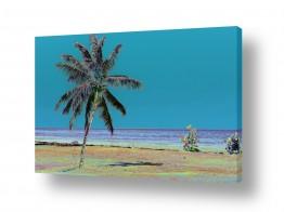 תמונות לפי נושאים קשת | קשת של צבעים