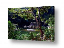 תמונות לפי נושאים חלומות | אגם החלומות