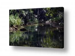 תמונות לפי נושאים רוגע | מים שקטים