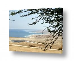 נוף חופים | מבט לים המלח 02