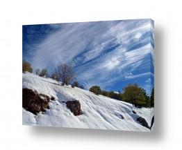 צילומים מזג-אוויר | הכל לבן