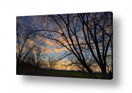צילומים מזג-אוויר | זריחה על המטע
