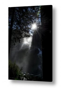 אירופה אוסטריה | אור ומים ביער