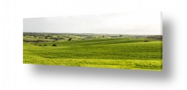 נוף שמים | שדות ירוקים
