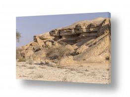 נוף חול | שומרי הסף