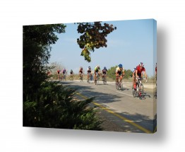 כלי רכב אופניים | מרוץ בירוק