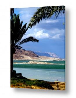 נוף שמים | חוף צבעוני