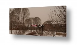 צילומים מזג-אוויר | שלג חום ובלונים