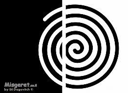 שבלול שחור לבן