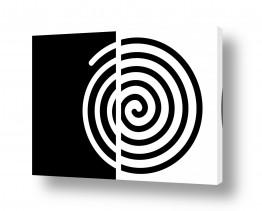 ציורים אתי דגוביץ' | שבלול שחור לבן