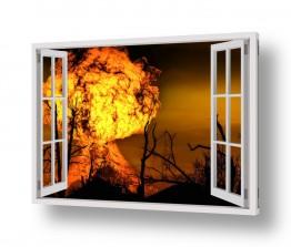 תמונות לפי נושאים להבה | שרפה