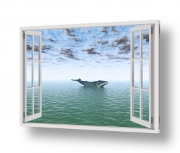 מיים ים | לוויתן בחלון