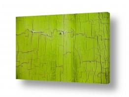 אסף סולומון הגלרייה שלי | ירוק אילנית