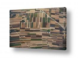 אסף סולומון הגלרייה שלי | שטיח קסמים