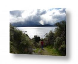 תמונות לפי נושאים ניו זילנד | heaven on earth