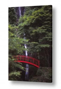 צילומים אסי סיני | גשר צר מאוד