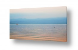 תמונות לפי נושאים חלום | סירה ושחף