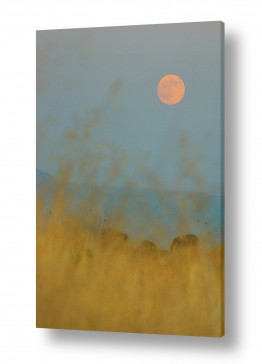 ירח ונוף מקומי ירח | ירח מלא ספטמבר