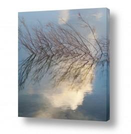 צילומים מופשט | ענן במים