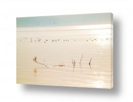 תמונות לפי נושאים בהיר | מים