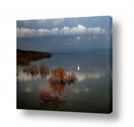 תמונות לפי נושאים השתקפות | moon rising