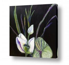 ציורים טבע דומם | סידור פרחים יפני