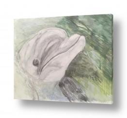 ציורים בעלי חיים | דולפין
