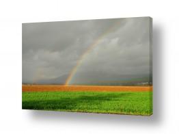 תמונות לפי נושאים קשת | קשת בשדה ירוק